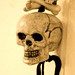 Small photo of Skull
