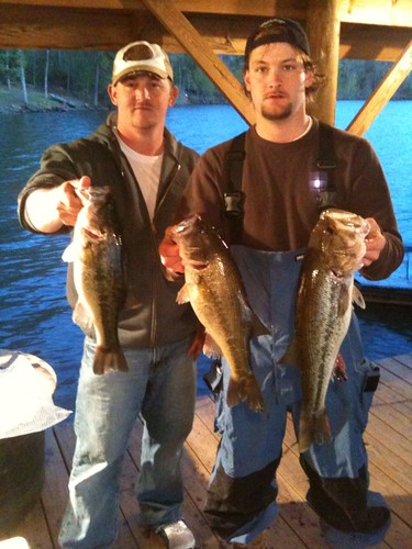 So yall want to learn toledo bend page 34 central for Fat fish blue toledo