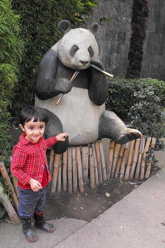 Con el panda