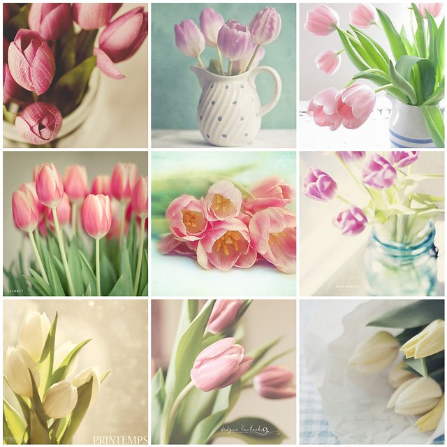 Things i love thursday: Tulips!
