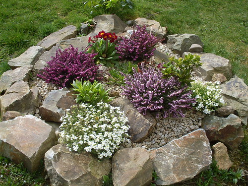 A rock garden question the garden lady for Simple rock garden designs
