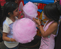 party(0.0), birthday(0.0), balloon(0.0), toy(0.0), food(1.0), cotton candy(1.0), pink(1.0),