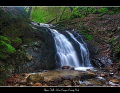 Upper Falls, Uvas Canyon Park