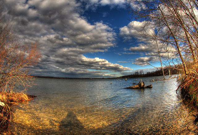 Manasquan Reservoir Wildlife Reserve An Album On Flickr