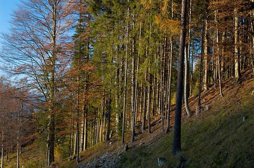 Steiermark October 2009