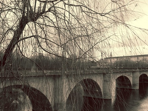 55/365 Another bridge