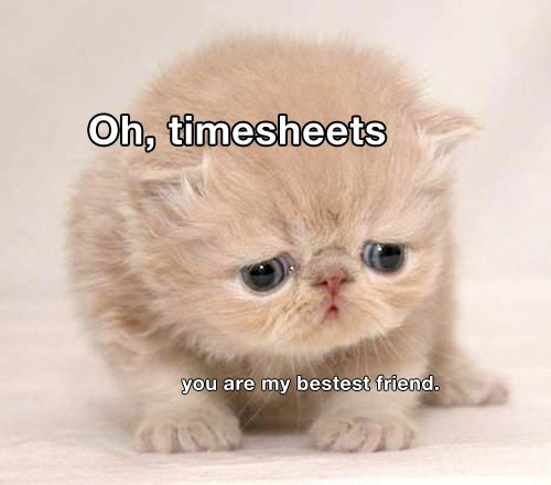 Funny Timesheet Pictures To Pin On Pinterest