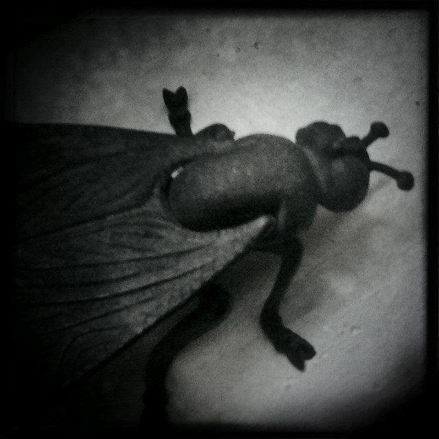 The Fly, Pose 1 (Hipstamatic iPhone Capture)