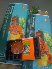 B&Q: Growbags, seed trays, etc.