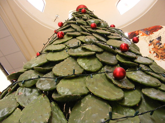 Plaza Bugambilias | Christmas tree made of cacti (prickly pe ...