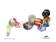 Website for Imagine Campaign (2005)