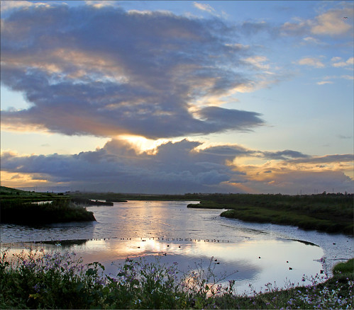 park birds clouds sunrise reflections harbor day cloudy lagoon 100views menlo bayfront 0055 coud 0054 vertorama