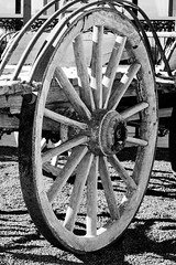 Horse cart wheel