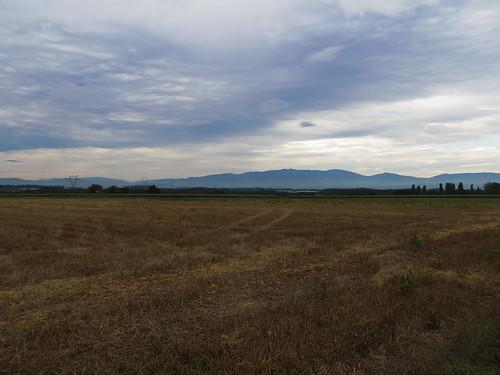20130819 11 053 Jakobus Feld Wiese Wolken Hügel