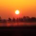 Sonnenaufgang mit Bodennebel