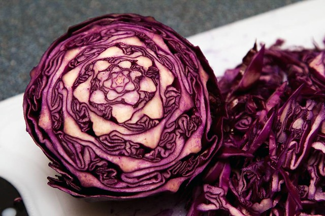 Red Cabbage Fractal