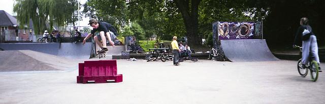 Ollie - Halina Panorama-F
