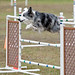 Small photo of Fond Du Lac County Kennel Club
