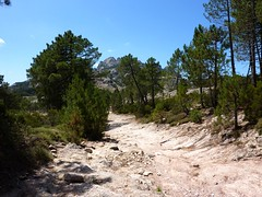 La piste partant de Bocca d'Illarata : impraticable sauf à pied
