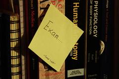 -Exams-