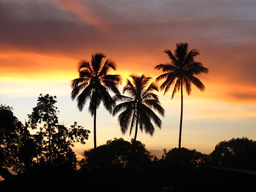 africa sunset clouds palmtrees malawi mozambique