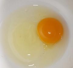 backyard egg