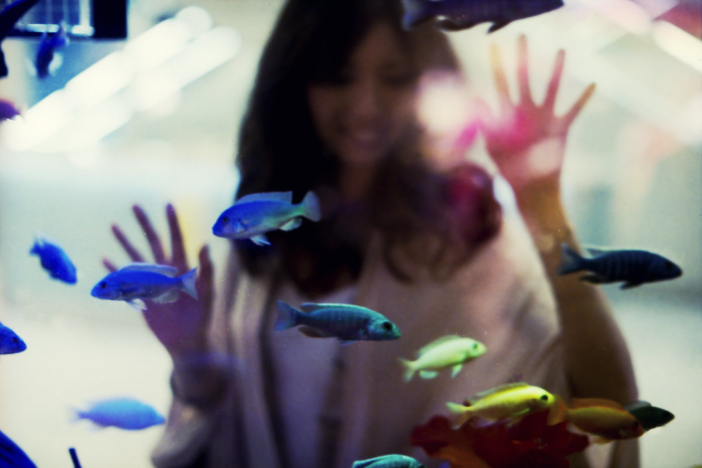 """in the summer rain II"", with saki, behind aquarium, colorful fish, odaiba, japan, ontoshiki"