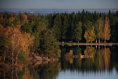 Surte Lake Autumn