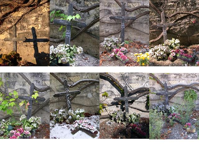 不变的十字架像似没有生命的现象