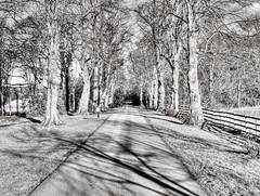 Stockbridge Drive