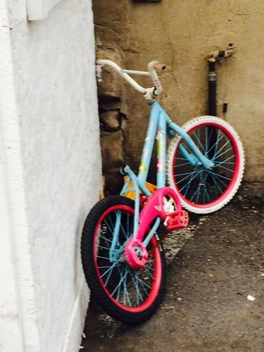 stolen bike photo