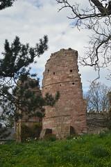 Ruins of Wilton Castle