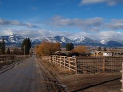 Montana 2005-07