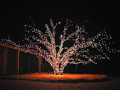 christmas lights by Reno Tahoe Window Cleaning & Christmas Lights