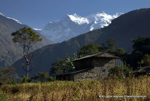 Small Farm - Annapurna Circuit Trek - Nepal