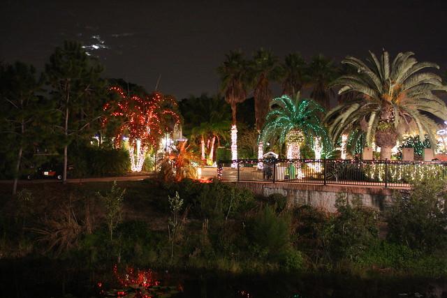 Christmas lights florida botanical gardens flickr - Largo botanical gardens christmas lights ...