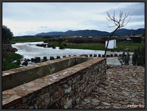 Arroyo de Alamillo ( C Real )