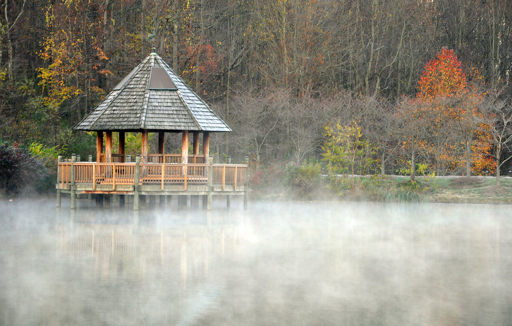 Early Morning Mist, Meadowlark Botanical Gardens, Vienna, Virginia