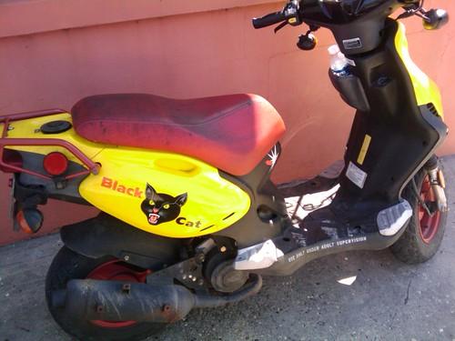 black cat scooter