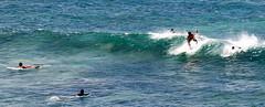 Hookipa Surf