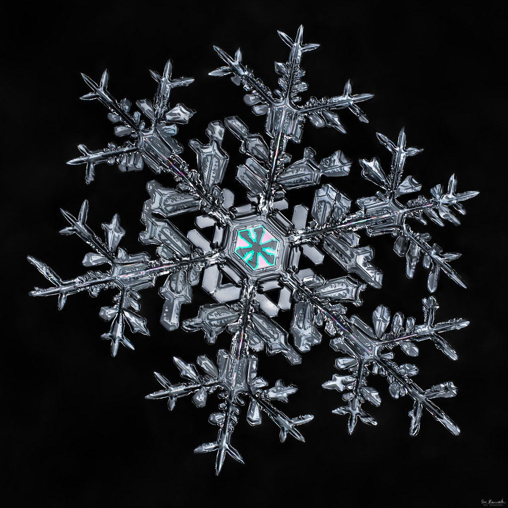 don komarechka quotthe snowflakequot ultra high resolution
