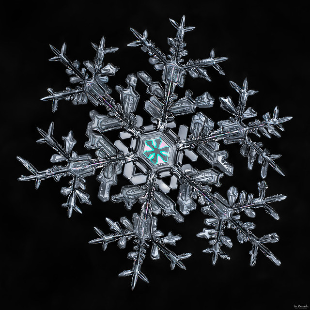 Snowflake-a-Day Finale 2013-2014, snowflake macro photo by Don Komarechka