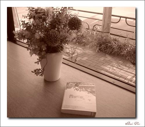 book sony year peter annie provence naka mayle annienaka 普羅旺斯的一年 culturetalk 彼得梅尔