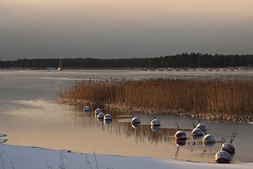 sea sunrise espoo finland shore matinkylä rantaraitti topseven tamronspaf90mmf28dimacro vanagram yourwonderland
