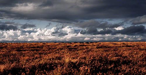 ireland sky landscape flickr best 2c kildare nikormat cokildare 72dpipreview