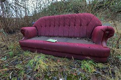 Purple soaked sofa