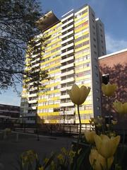 Golden Lane Estate tower