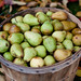 Bushel of Pears