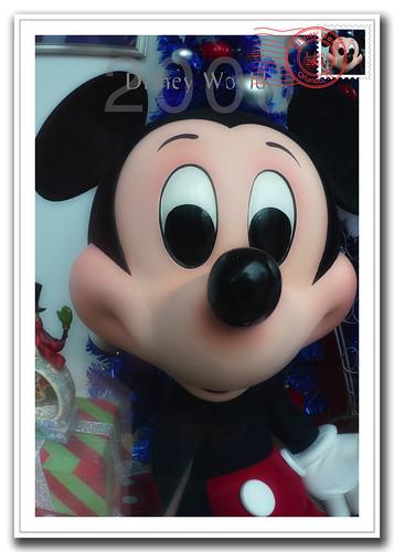 Walt Disney Postcard