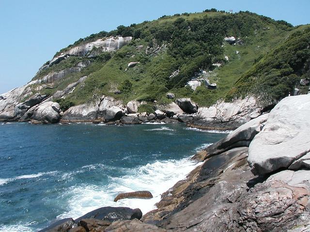 schatz snake island
